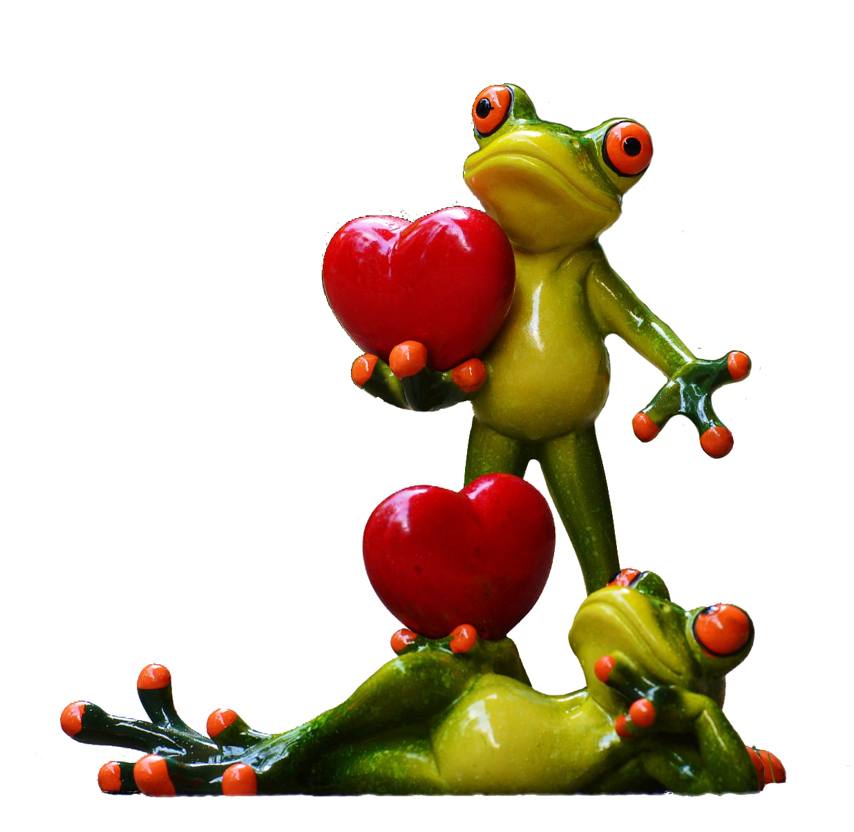 frogs-903176_1920